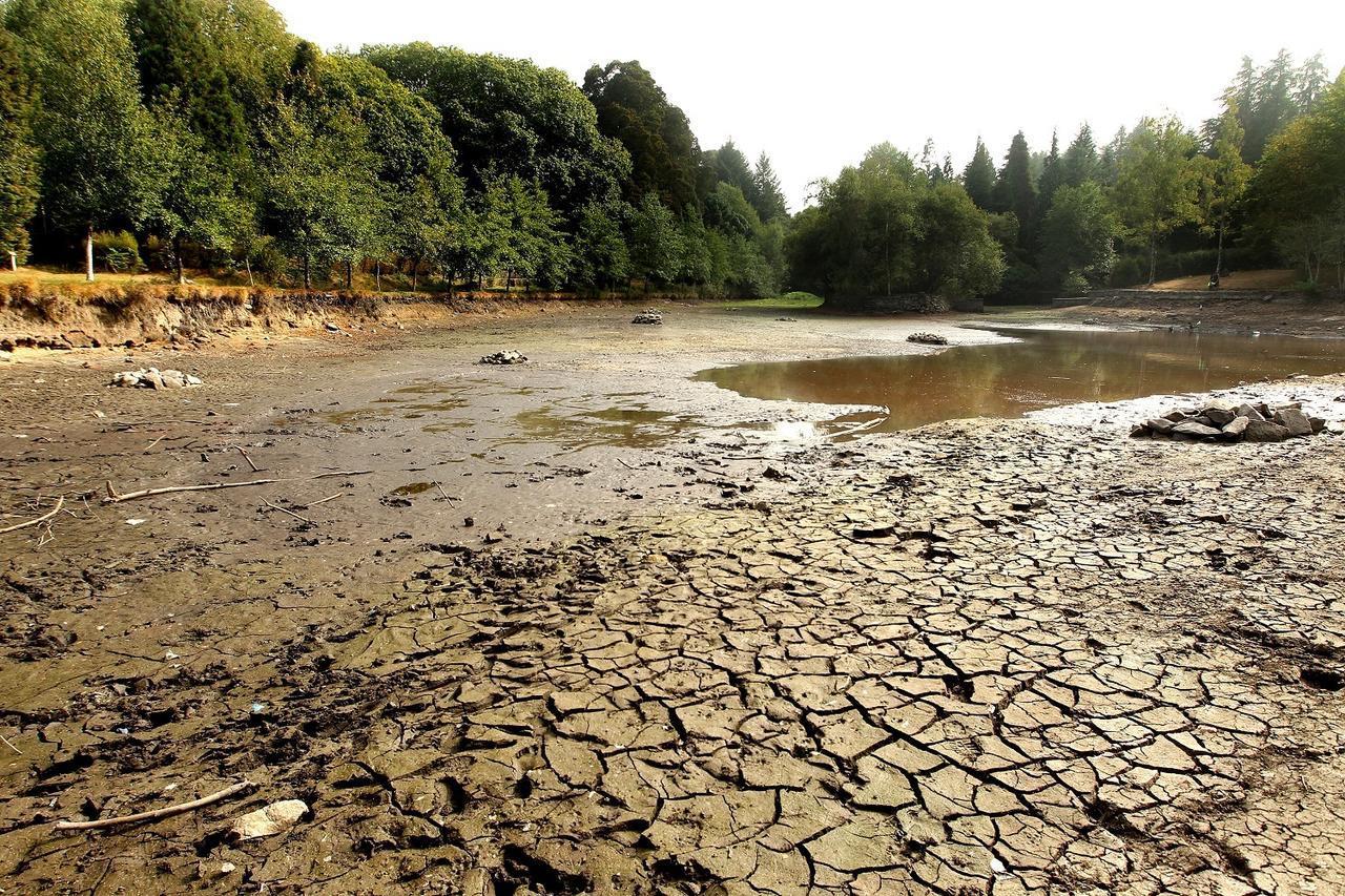 La biodiversidad depende del agua for Como se hace un lago artificial