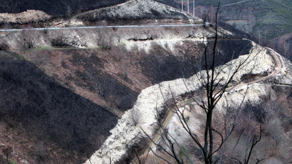 Galiza, incendios: La Xunta admite que en As Fragas do Eume han ardido 750 hectáreas.  - Página 8 2018022612464112397