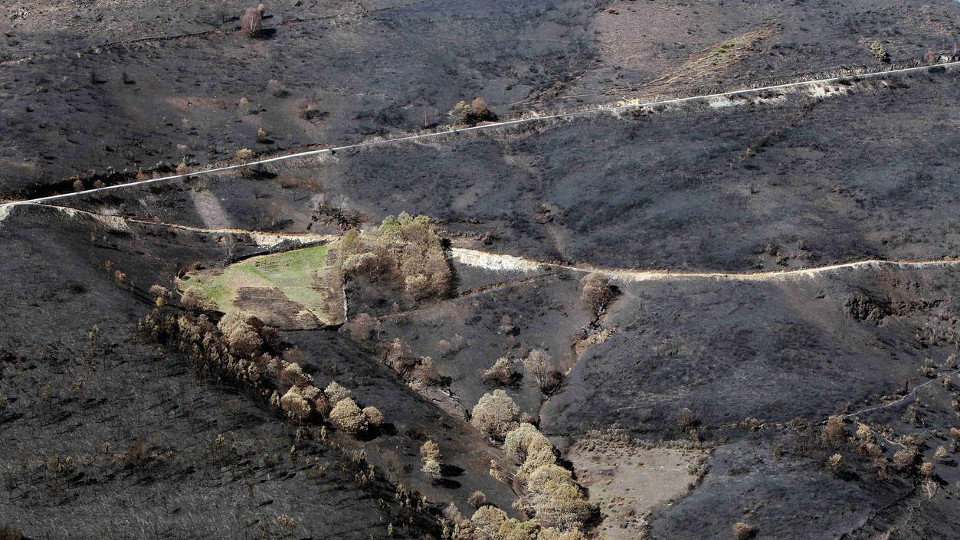 Galiza, incendios: La Xunta admite que en As Fragas do Eume han ardido 750 hectáreas.  - Página 8 2018041714454372069