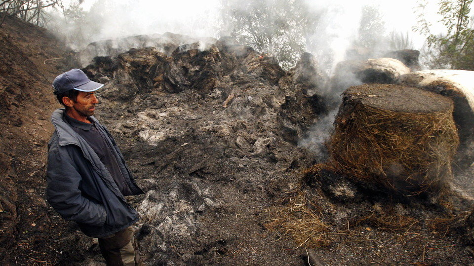 Galiza, incendios: La Xunta admite que en As Fragas do Eume han ardido 750 hectáreas.  - Página 8 201805101157055258