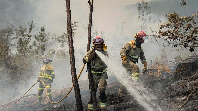 Efectivos de extinción, en el incendio en Cenlle. BRAIS LORENZO (EFE)