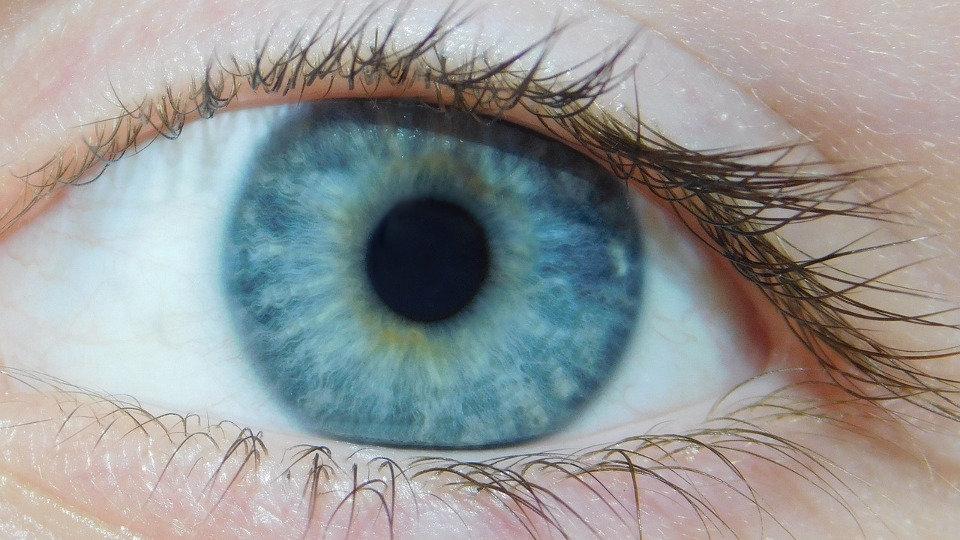 da6e85f99d Cómo funcionan las lentillas progresivas o multifocales