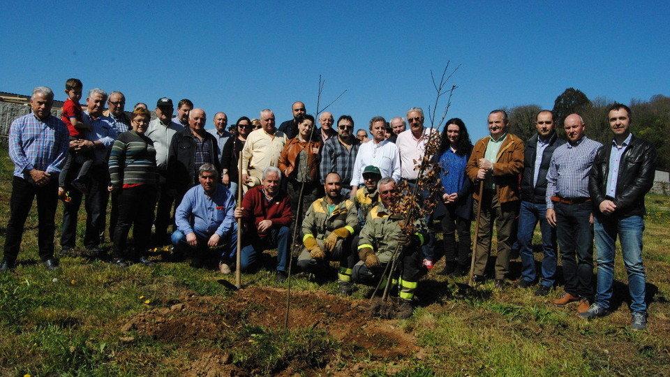 Participantes en la plantación de árboles en Vila de Mouros. PORTO